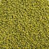 Miyuki Seed Bead 15/0 Apx 22g Frosted Glazed/ Rainbow Green Lime Matte Aurora Borealis